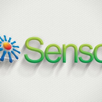 logo design, imprimari.ro, senso